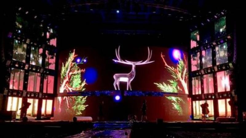 Cerbul de Aur 2019: 71 de artisti din 21 de tari s-au inscris in selectia pentru concursul international de interpretare